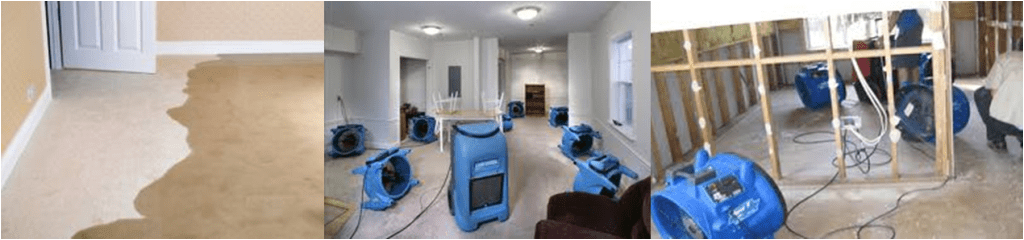 Flooded Carpet Cleaning