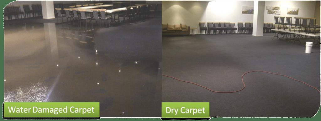 Wet Carpet Drying Melbourne Flood Damaged Carpet
